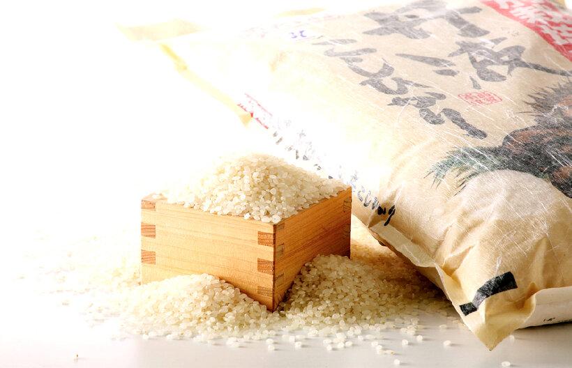 【送料無料】無洗米 国産俵米